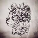 cat-tat-e1498367232887.jpg
