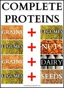 1bc6c528e5df4bb1d0d9adeee630a585--vegetarian-protein-vegetarian-entrees