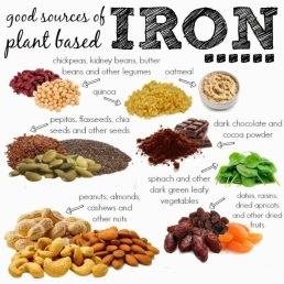 9-foods-that-are-good-source-of-plant-based-iron0