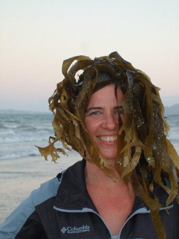 seaweed head