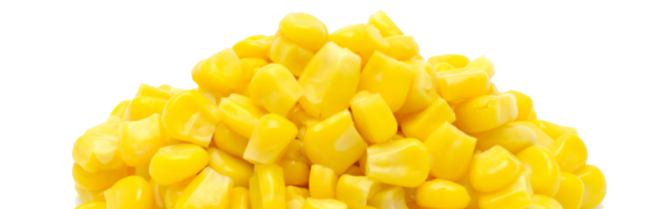 cropped-sweet-corn-png-transparent-image.png